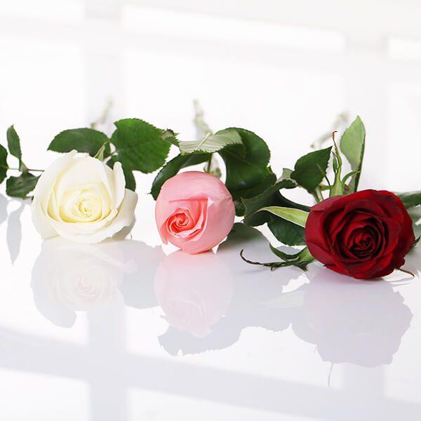 گل فروشی انلاین