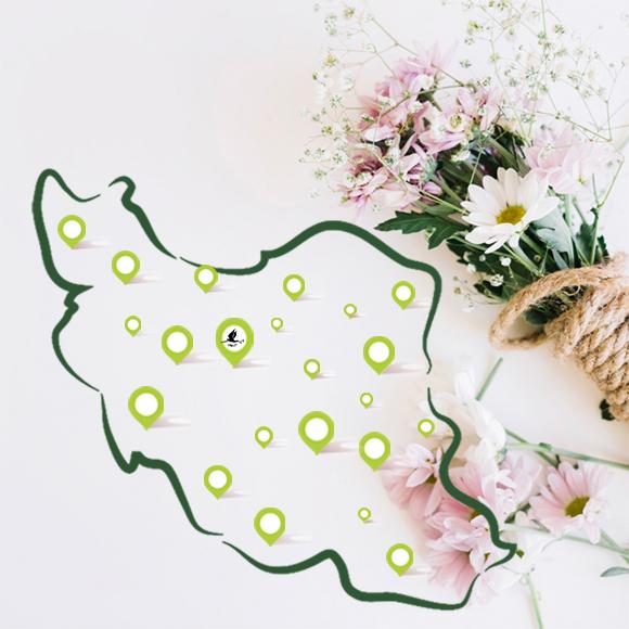 سفارش اینترنتی گل در سراسر ایران ( استان ها )