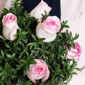 ارسال گل به سراسر ایران