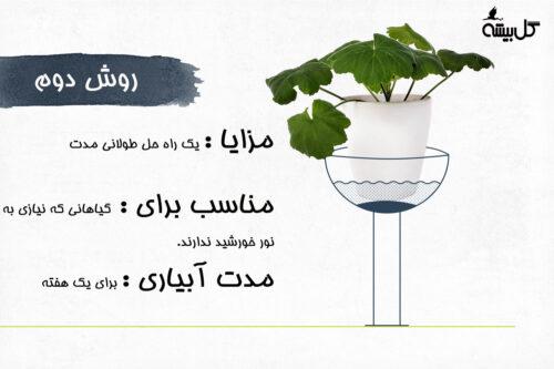 آبیاری گیاهان آپارتمانی ، روش صحیح آبیاری گیاهان ، آبیاری گیاهان در هنگام سفر ، خود آبیاری ، چگونگی آبیاری گیاهان آپارتمانی