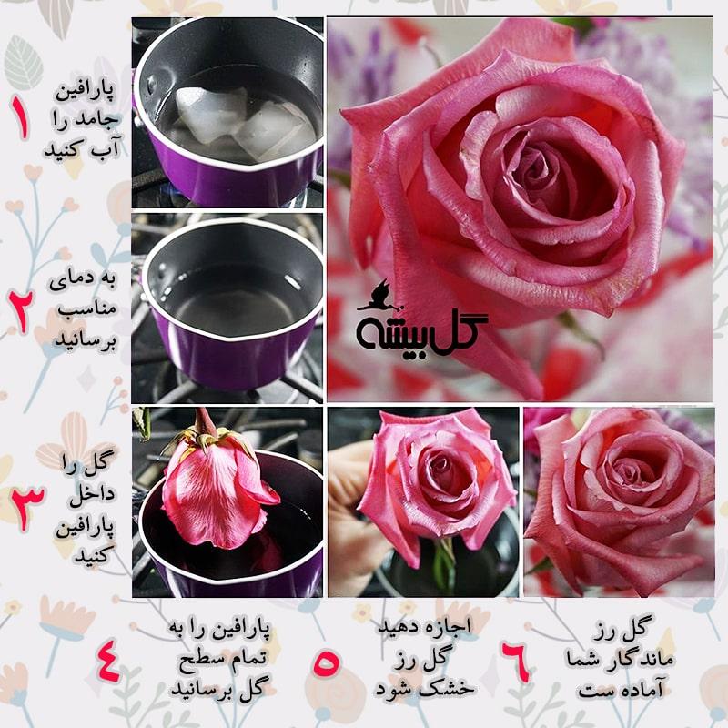 طریقه ساخت گل جاودان ، درست کردن گل جاودان با پارافین ، خرید رز جاودان ، قیمت رز جاودان